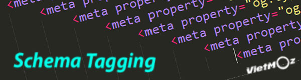 schema-tagging