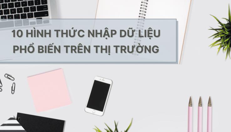 10-hinh-thuc-nhap-lieu-pho-bien-tren-thi-truong